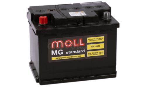 Moll MG Standart 6СТ-60